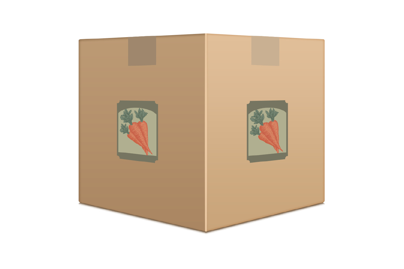 seed packet graphic box